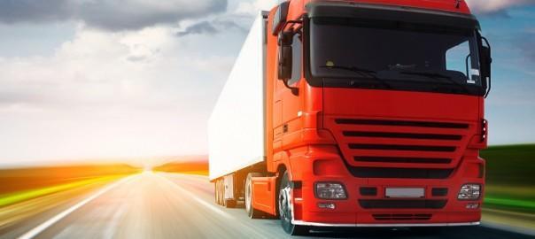 mal ve hizmet ile ilgili firmalar için lojistik seferberlik bilgisi sorgulama