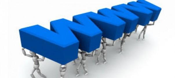 taşıma kapasitesine göre firma sorgulama